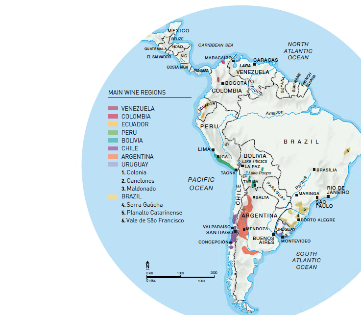 Oz Clarke | World of Wine: Discover South America on world history map, world map regions of the world, sonoma wine region map, south africa wine region map, hungary wine region map, world wine production map, world regions realms map, geography world regions map, world best red wine, world food map, world europe map, 49th parallel on map, california wine map, world new zealand map, world vintage map, world cultural regions map, world oregon map, world soils map, germany wine region map, world fashion capitals map,